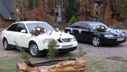 Оренда автомобілів для весілля
