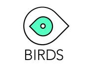 Видео продакшн студия BIRDS - производство рекламных роликов