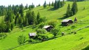 Продается хозяйство с роскошным участком 400 соток в Карпатах