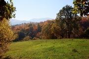 Продажа участка земли в Карпатах без посредника