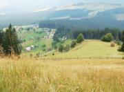 продам земельну ділянку в Кривопіллі