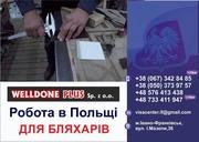 Польська фірма **WELLDONE PLUS**  ЗАПРОШУЄ НА РОБОТУ  БЛЯХАРІВ